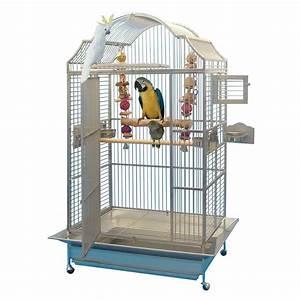 Cage A Perroquet : cage inox perroquet king 39 s cages mod le 306 inox 1 700 00 ~ Teatrodelosmanantiales.com Idées de Décoration