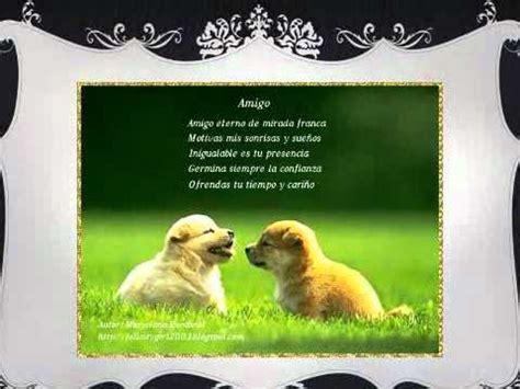 significado de amigo tarjetas para el verdadero significado de la amistad 1