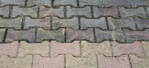 Soda Reinigung Pflastersteine : pflastersteine reinigen anleitung zur reinigung von betonpflaster ~ A.2002-acura-tl-radio.info Haus und Dekorationen