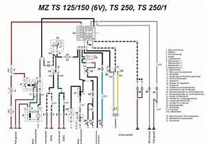Mz Ts 125 Ts 150 Standard