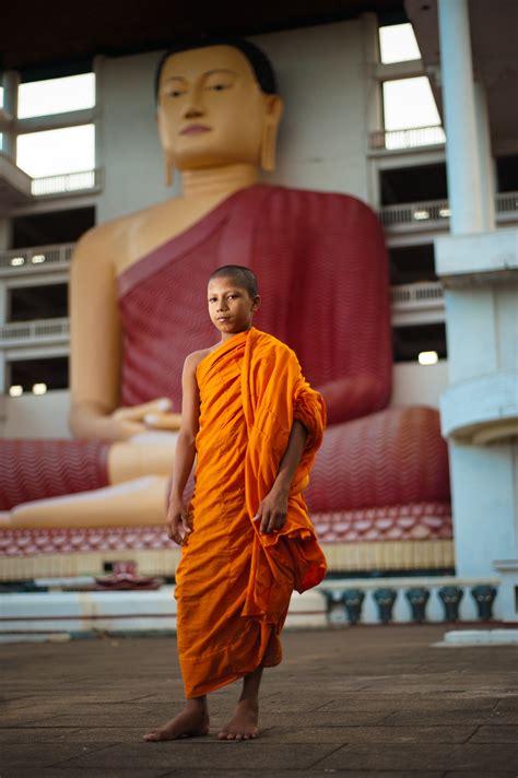 buddhism politics  sri lanka dissertation reviews