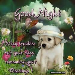 Beautiful Good Night Blessings Quotes