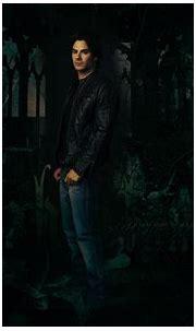 Damon Salvatore - The Vampire Diaries TV Show Wallpaper ...