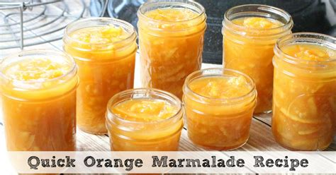what is marmalade quick orange marmalade recipe in the pressure cooker