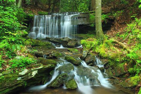 image libre eau chute deau feuille riviere bois
