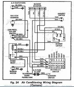 1979 Trans Am Fuse Box Diagram
