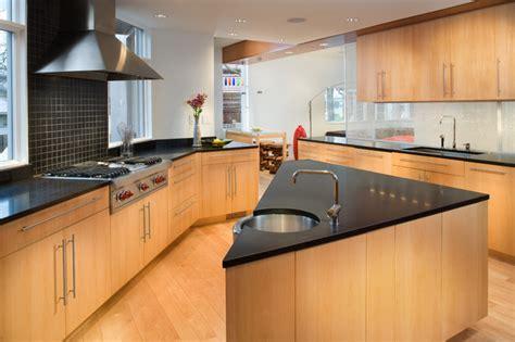 which kitchen cabinets are best 1725 modern transformation modern kitchen dc metro 1725