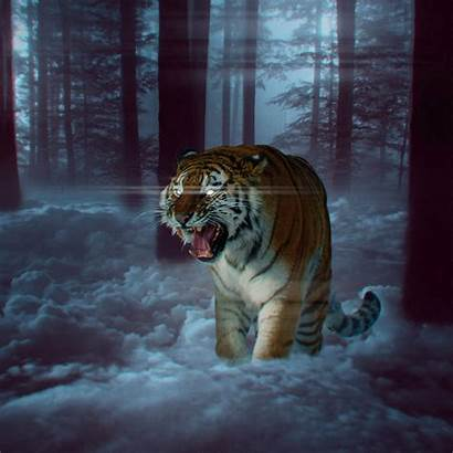 Tiger Tigre Fantasy Floresta Celular Parede Papel