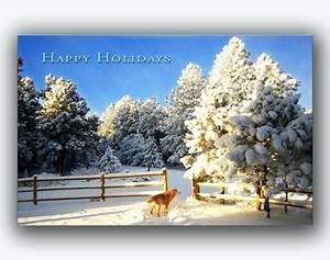 Colorado Holiday Christmas Cards Colorado Nature Paperblog