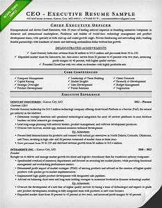 Executive resume examples writing tips ceo cio cto for Ceo resume