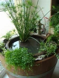 petit bassin d39interieur bien pratique little gardens With fabriquer une fontaine d interieur