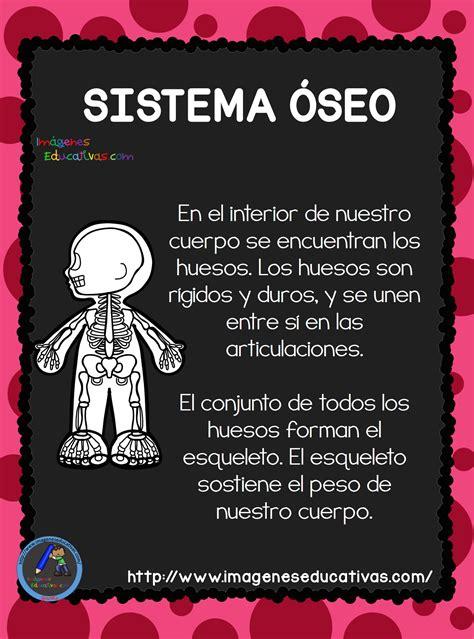 el cuerpo humano aparatos y sistemas para primaria 3