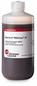 Rnaclean Xp For Rna  U0026 Cdna Cleanup