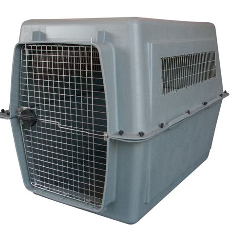 petmate intermediate crate