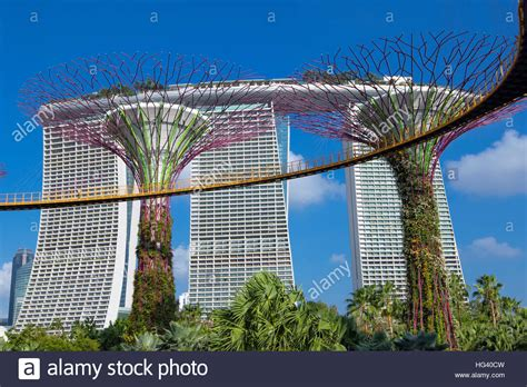gardens by the bay and marina bay sands hotel singapore - Hotel Near Garden By The Bay Singapore