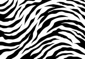 White Tiger Stripes - Download Free Vector Art, Stock ...