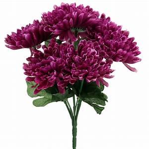 Getrocknete Blüten Kaufen : chrysantheme aubergine mit 7 bl ten preiswert online kaufen ~ Orissabook.com Haus und Dekorationen
