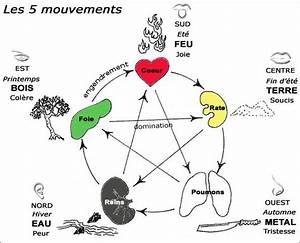 qigong http wwwshivohamyoganl energy flow yinyang With le feng shui et les couleurs 1 les 5 elements le cycle productif