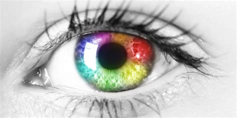 Everything You Need To Know About Colour Blindness