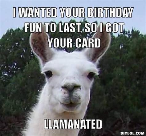 Llama Birthday Meme - happy birthday funny llama google search llama pinterest funny birthdays and happy