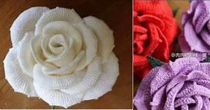 Big Pretty Roses  Free Crochet