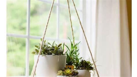plantas colgantes ideas  decorar