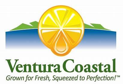 Ventura Coastal Lemon Portfolio Llc Glass Headquarters
