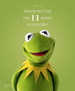 Kermit The Frog Quotes. QuotesGram