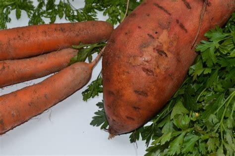 La patate douce pour des plats colorés! - Food, Fun, Foto