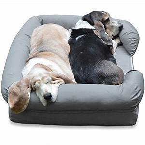 your dog wants a better bed heres how to choose a dog bed With best dog bed for large older dogs