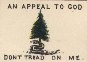 Off 2018 pine tree