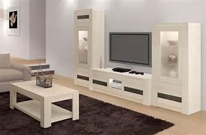 Modele De Salon : awesome modele de salon simple contemporary amazing ~ Premium-room.com Idées de Décoration
