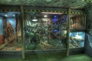 custom design house plans enclosures picture of reptile world new quay new quay