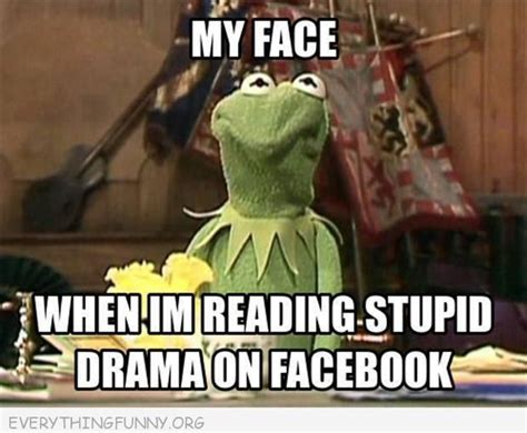 Kermit Meme My Face When - funny kermit meme my face when i m reading stupid drama on facebook humor pinterest kermit
