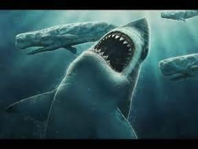 World Biggest Shark Megalodon