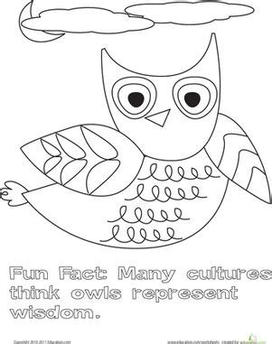 color  flying owl  images witch coloring pages