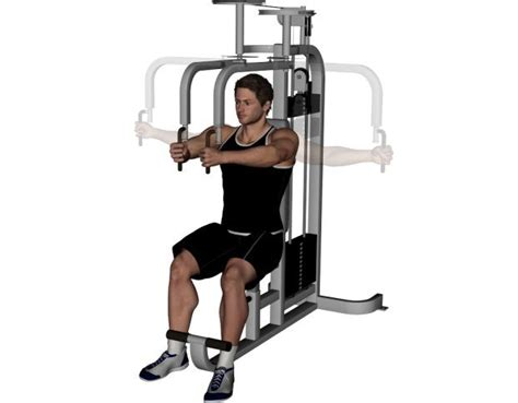 machine fly exercise 10 most important middle chest