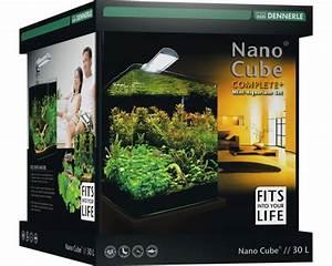 Dennerle Nano Cube 60 Complete Plus : dennerle aquariumset nano complete plus 30 liter kopen bij hornbach ~ Frokenaadalensverden.com Haus und Dekorationen