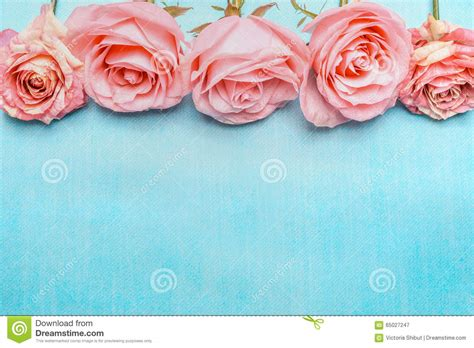 Pink Pale Roses Border On Blue Background Stock Image