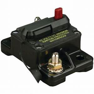 Purchase  New  Shortstop 12v V01 30a Automatic Reset