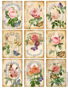 Printable French Vintage Shabby Chic Roses