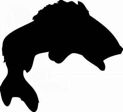 Fish Silhouette Clipart Jumping Clipground