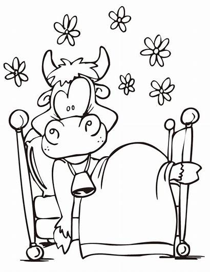 Coloring Cow Fun Boy Template Kuh Ausmalbilder