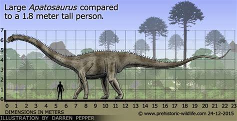 Ichthyosaur « Paleoaerie