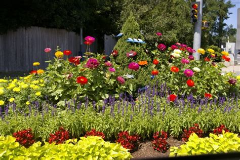 flower bed layouts small annual flower bed layouts flower beds service visit how does your garden grow