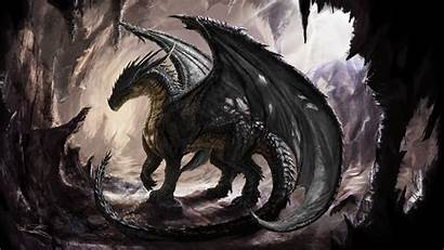 Dragon Fantasy Artwork Wallpapers Anime Shadow Desktop