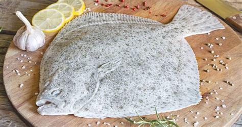 cucinare rombo ricette rombo facili e veloci