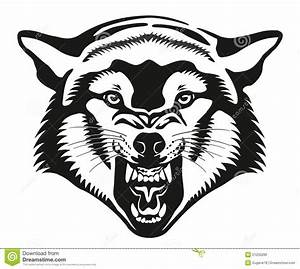 Wolf Head. Illustration. Stock Illustration - Image: 51250286