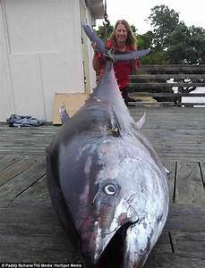 Fisherwoman catches world record 64 STONE tuna (worth $2 ...