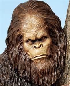 Bigfoot Tree Face
